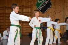 Taekwondo_Haering_Biburg-12