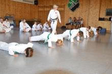 Taekwondo_Haering_Biburg-13