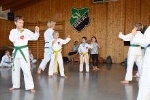 Taekwondo_Haering_Biburg-15