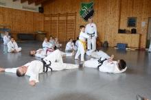 Taekwondo_Haering_Biburg-21